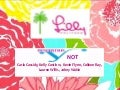 Lilly Pulitzer Strategic Marketing Plan