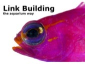 Link Building the Aquarium Way