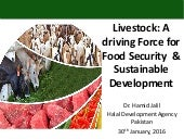 Livestock - A Driving Force for Food Security and Sustainable Development