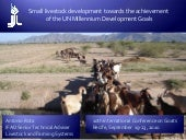 Small livestock development towards...