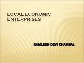 Local economic enterprises   specia...