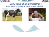 Dairy Value Chain Development