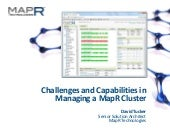 Challenges & Capabilites in Managin...