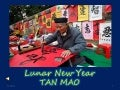 Lunar New Year TAN MAO 2011