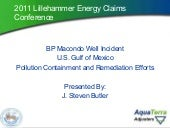 BP Macondo Well Incident in U.S. Gu...