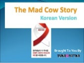 Mad Cow Story - The Korean version