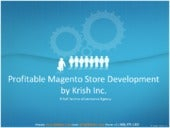 Profitable Magento Store Developmen...