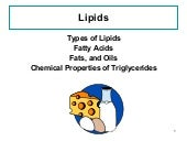 Main lecture for lipids