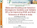 GRM 2013: Molecular Breeding and Selection Strategies to Combine and Validate QTLs for Improving WUE and Heat Tolerance of Wheat in India -- KV Prabhu