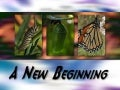 New Beginning 5: Make Changes