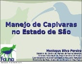Manejo de capivaras no estado de sp