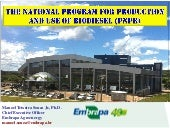 The Brazilian National Plan of Production and Use of Biodiesel - PNPB
