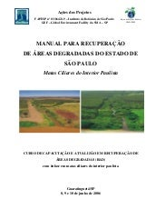 Manual de RAD - SP
