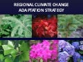 Regional Climate Change Adaption Strategy