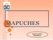 Mapuches blog