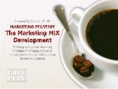 Marketing mix development