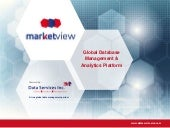 MarketView Data Management Platform | Data Services, Inc.