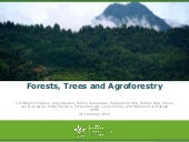 Forests, Trees and Agroforestry
