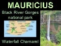 Mauricius - Black River Gorges national park + Waterfall Chamarel - 2012