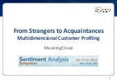MeaningCloud - Multidimensional Customer Profiling - Sentiment Analysis Symposium 2015