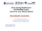 Menarid: Groundwater Economics