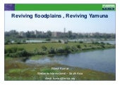 Reviving floodplains, Reviving the ...