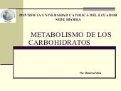 Metabolismo de los_carbohidratos