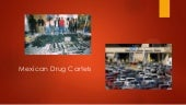 Mexican drug cartels (1)