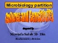 Microbiology Power Point