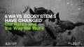 6 Ways Ecosystems Have Changed Our Roles and the Way We Work