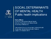 Minas social determinants 2013 - Gu...