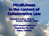 Mindfulness In The Context of Colla...