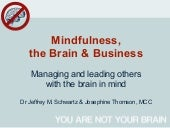 Mindfulness, the Brain & Business (...