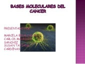 Molecular Del Cancer