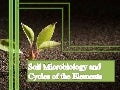 Soil microbiology and cycles of the elements