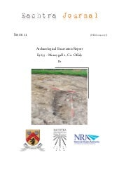Archaeological Report - Moneygall 2...