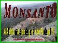 Monsanto Aldeia