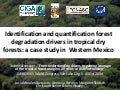 Identification and quantification forest degradation drivers in tropical dry forests: a case study in  Western Mexico