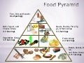 Mouse mischief food pyramid