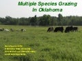 Beginning Farmer Livestock 2: Multiple Species Grazing in Oklahoma