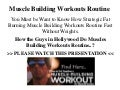 Muscle Building Workouts Routine