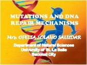 Mutation and dna repair mechanisms