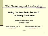 The Neurology of Awakening - Rick H...