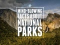 Mind-Blowing Facts About National Parks