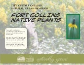 Fort Collins Native Plants - Fort C...