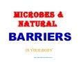 Microbes And Natural Barriers In Your Body