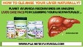 Natural Remedies To Cleanse The Liver - LIVER CARE PACK