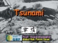 Natural hazards   tsunami