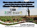 Navarro C - Results Climate Projection Development (CIAT-IDB Project)