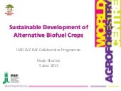Sustainable development of alternative biofuel crops